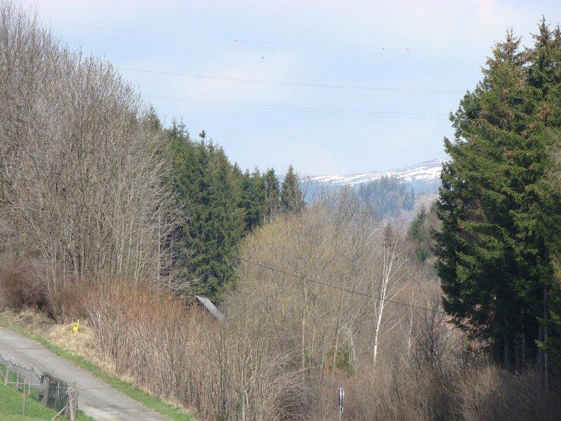 vzadu Alpy